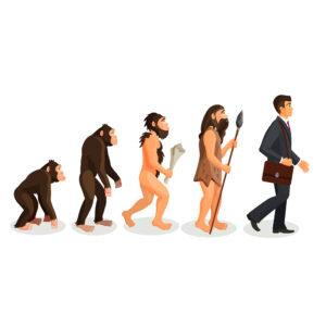 CARNICERIA A DOMICILIO EVOLUCIÓN HOMÍNIDO